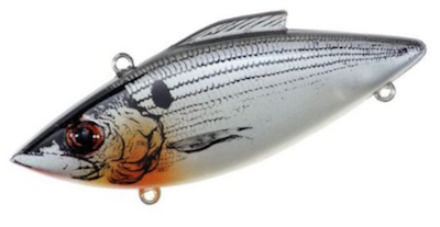 Shad color Rat-L-Trap redfish lure for catching all size redfish.