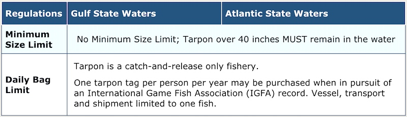 Florida State tarpon fishing regulations chart. 14 January 2018.