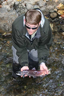 Releasing salmon in stream after tagging.