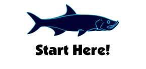 Start here for Florida fishing tips, information, and guides.