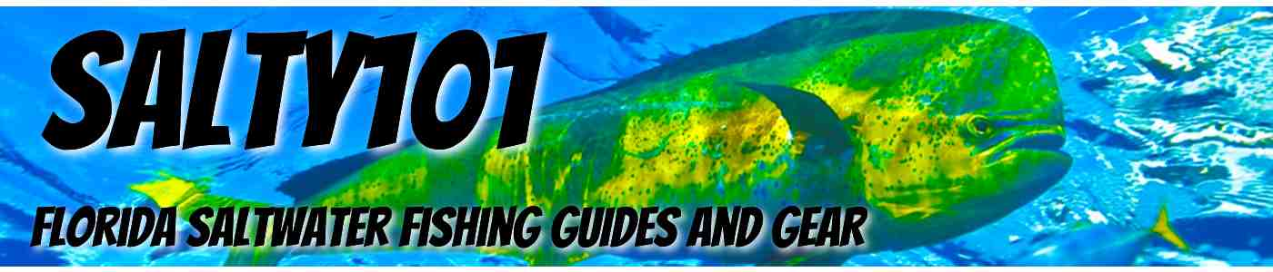Florida Saltwater Fishing Tips – How To Catch | Salty101